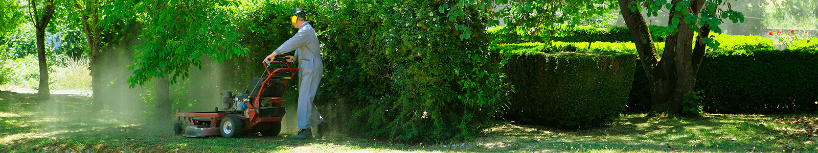 Espace verts